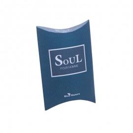 Pánská toaletní voda Soul Mini parfém 20 ml